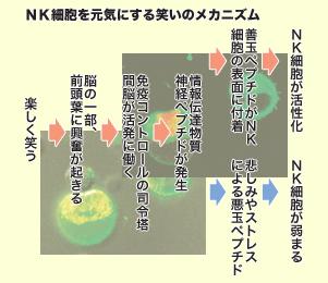 笑いんメカニズム.jpg